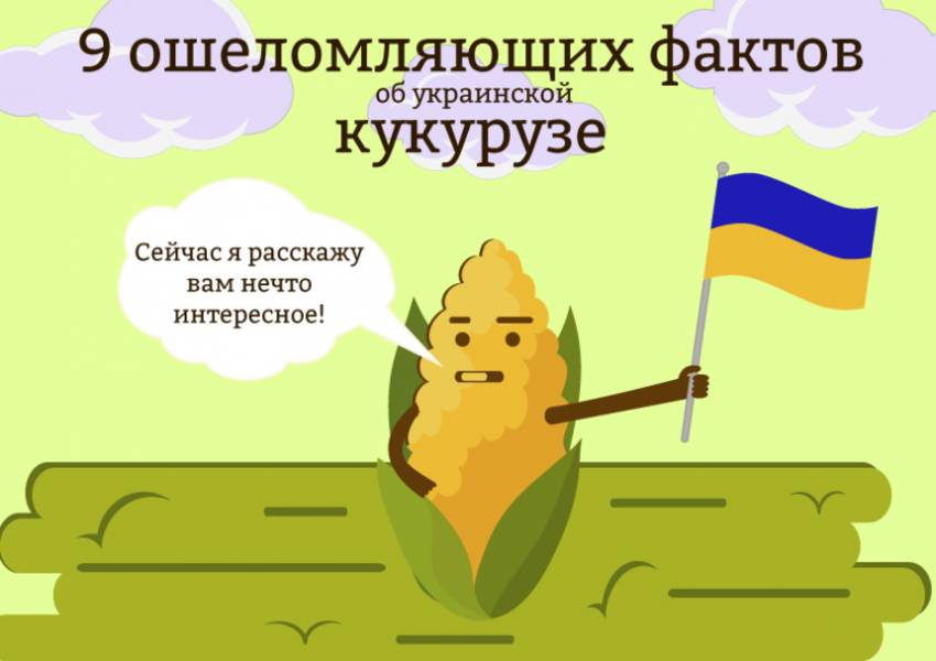 9 ошеломляющих фактов об украинской кукурузе