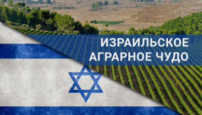 Аграрный сектор Израиля: когда песок продуктивнее чернозема