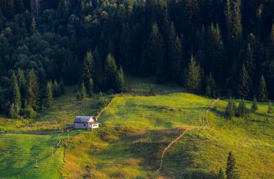 Аграрный туризм в Украине: проблемы и перспективы развития