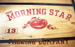 Агрокомпания Morning Star стала суперэффективной. Её секрет — холакратия