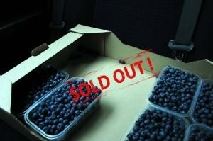 AgroMarketing: Как сделать солд-аут ягод благодаря соцсетям