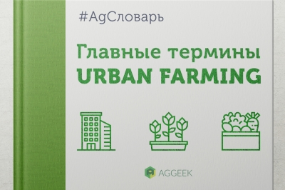 AgСловарь: главные термины Urban Farming
