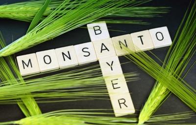 Bayer купила Monsanto и стала агрогигантом