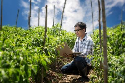 Bayer запускає безкоштовний онлайн-курс для аграріїв
