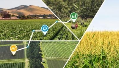 Больше данных: как технологии помогают агрономам