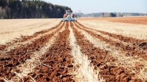 Что такое strip-till? Плюсы и минусы щадящей обработки почвы