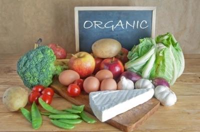 Эко, био и органик — в чем разница?