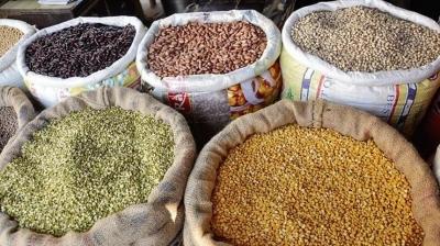 Прогнозы ФАО по продовольственных рынках