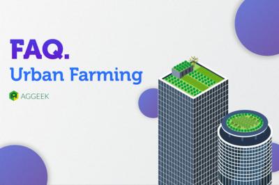 FAQ: зачем фермы в городах и почему лук на подоконнике – это не Urban Farming