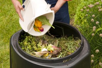 Гид по компосту в домашних условиях