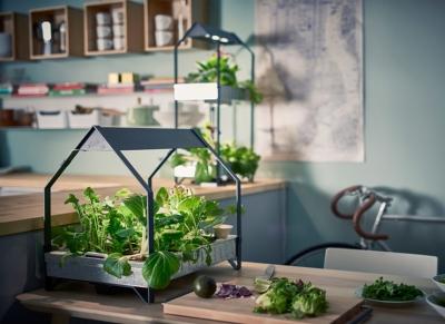 Гидропонная система от IKEA позволяет выращивать овощи круглый год