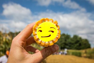 Исследование APD: насколько эффективно украинское растениеводство
