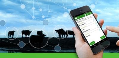 Как одна бразильская компания меняет подход к животноводству