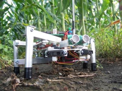 Как роботы изменят сельское хозяйство через 5-10 лет