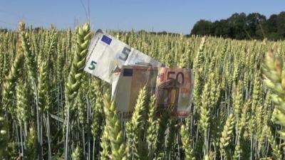 Как субсидии ЕС содержат агромафию в Болгарии