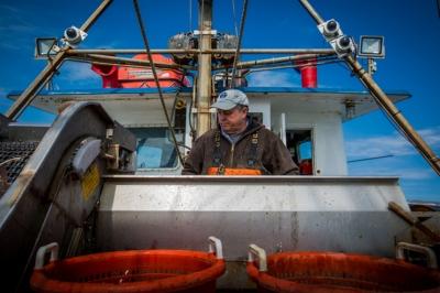 Камеры и машинное обучение помогают контролировать вылов рыбы