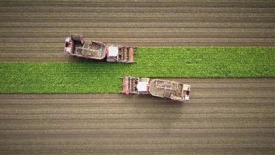 Лучшие аматорские фото британских фермеров
