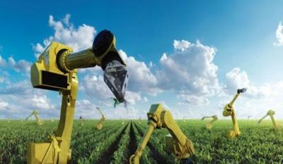Машинное обучение — новое оружие против болезней сельскохозяйственных культур