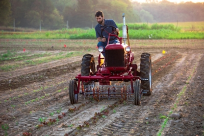 Меньше, медленнее, лучше: зачем новый трактор создают по лекалам старого