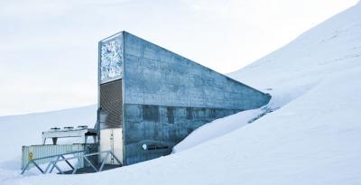 Норвегия дополнительно вложила $13 млн во Всемирное семенное хранилище. Вот почему