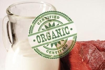 Новое исследование показало преимущества органического молока и мяса