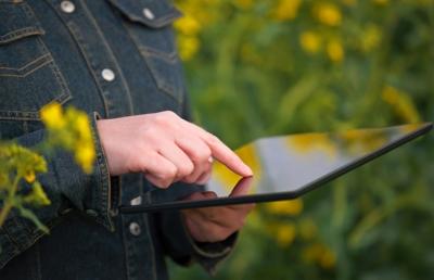 Облачные хранилища тайком собирают данные о фермерах. Это плохо?