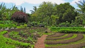 Пермакультура – сельское хозяйство в гармонии с природой