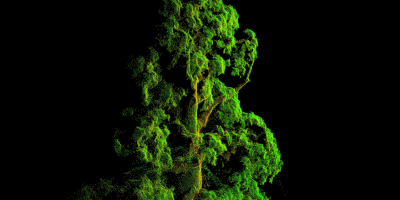 Pix4D и Parrot сделали карту NDVI в 3D