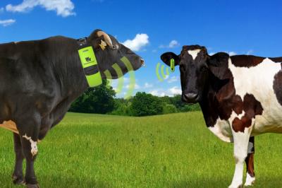 Пять хай-тек трендов в животноводстве