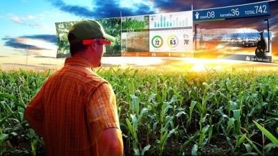 Почему цифровое земледелие станет новой сельскохозяйственной революцией
