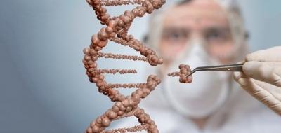 Почему инструмент для редактирования генов растений еще не «пошел в массы»?