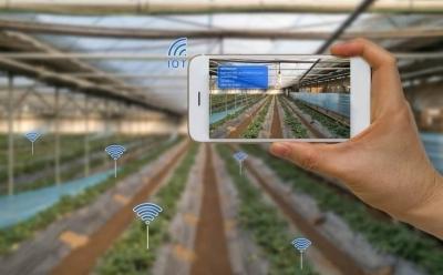 Почему в агросекторе до сих пор не появились стартапы-единороги?