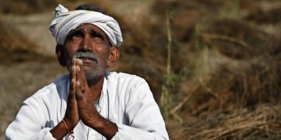 Почему в Индии сотни тысяч фермеров кончают жизнь самоубийством?