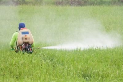 Популярный гербицид признали возможным канцерогеном