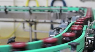 Просветить всё: в Украину едет новый итальянский рентген для сортировки плодов