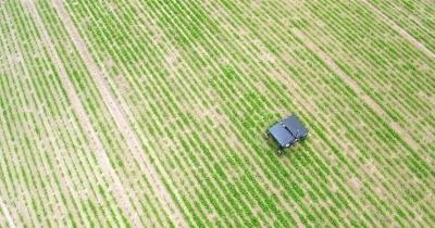 Робот для борьбы с сорняками на солнечной батарее. Продажи стартуют в 2019 году