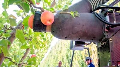 Робот, который может собирать одно яблоко в секунду
