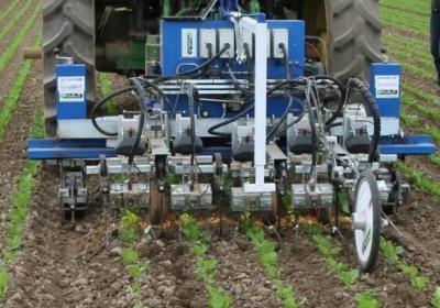 Робот-культиватор ― на ферме по соседству