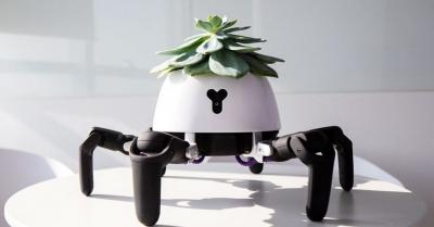 Робот-вазон может подбирать оптимальные условия для растений