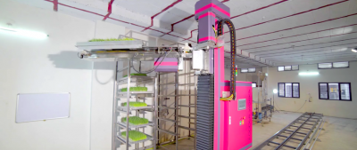 Робот выращивает корм для скота в четыре раза быстрее человека