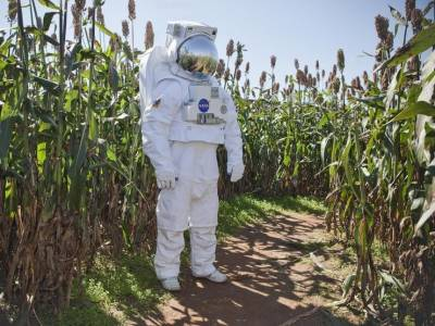 Сельское хозяйство в неожиданных местах