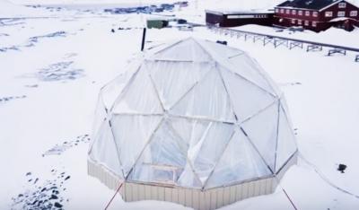 Шеф-повар построил небольшую ферму в Арктике. Несмотря ни на что