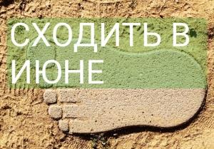 Сходить в июне: 11 событий для аграриев