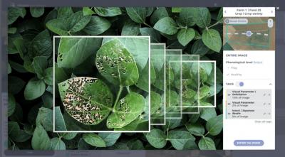 Система анализа агроданных Taranis поглотила платформу Mavrx