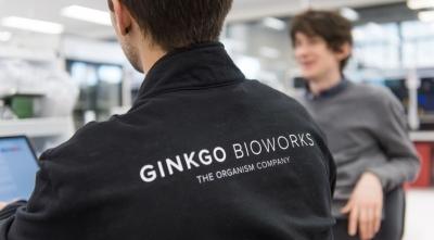 Совместное предприятие Bayer и Ginkgo Bioworks получило имя, CEO и план
