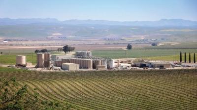 Технологии AgTech в виноделии