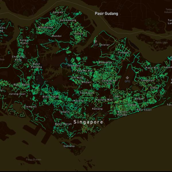 Treepedia — сайт, который показывает сколько деревьев растет в крупных городах