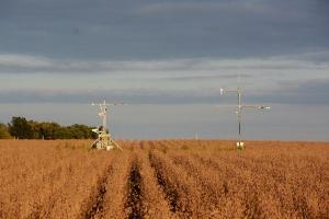 Ученые США измеряют фотосинтез растений, чтобы прогнозировать урожайность в любой точке мира