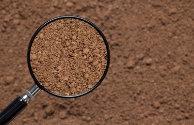 Украинские учёные призывают власти обратить внимание на деградацию почв