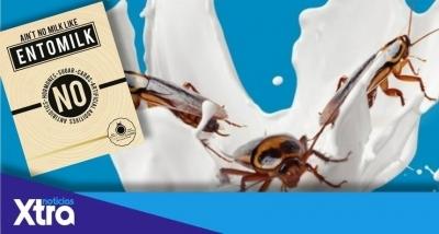 В Африке продают молоко насекомых и называют его суперпитательным